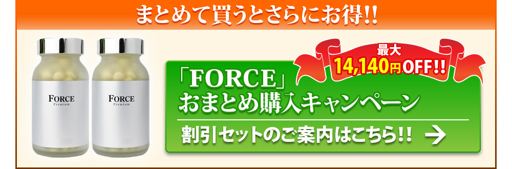 FORCEおまとめ購入キャンペーン・割引セットのご案内はこちら!
